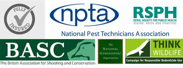 Pest control essex trade associations- Rodent control Essex